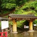 Photos: 史跡鍾乳洞源三窟 入口までの道