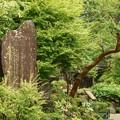 Photos: 妙雲寺