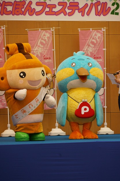 Photos: カワセミピッピくんとはにぽん