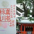 Photos: 麻布氷川神社の御朱印(令和元年8月)