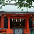 Photos: 麻布氷川神社(令和元年8月)