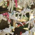 Photos: 太子堂八幡神社(令和元年8月)