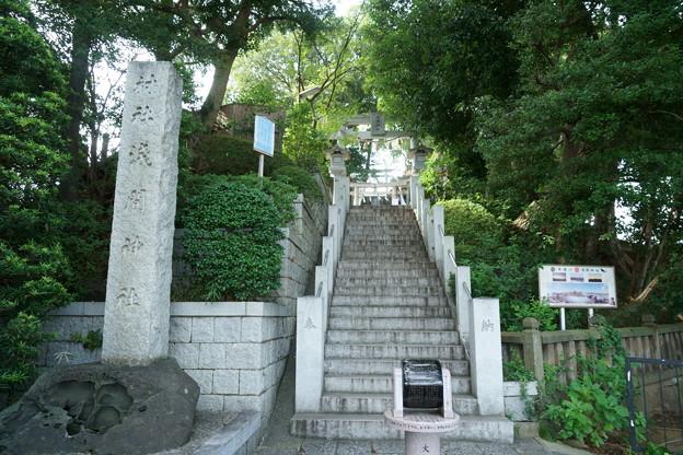 多摩川浅間神社(令和元年8月)