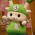 Photos: ふっかちゃん
