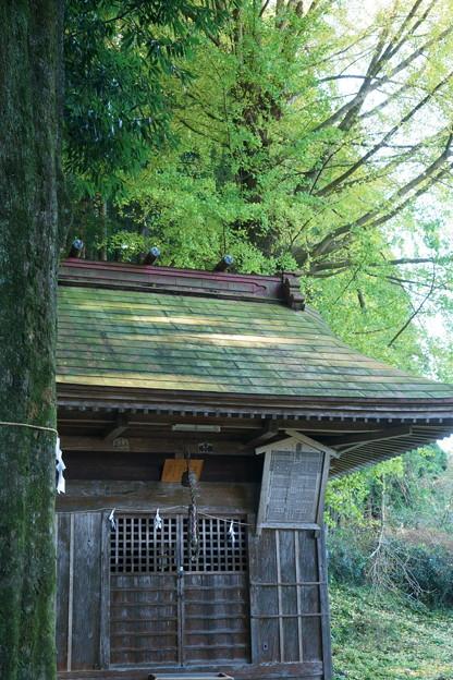 軍太多利神社