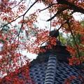 Photos: 能仁寺