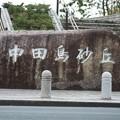 中田島砂丘