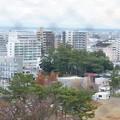 Photos: 浜松城 天守閣より