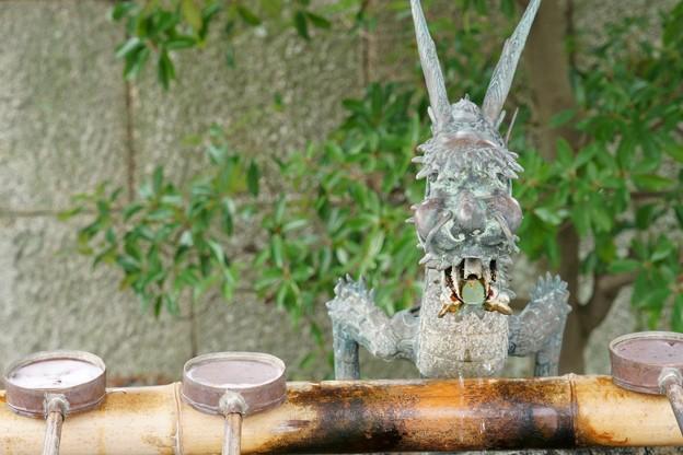 五社神社・諏訪神社
