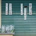 Photos: 日高スナップ