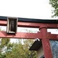 Photos: 穴守稲荷神社