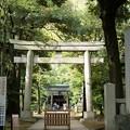 Photos: 赤坂氷川神社