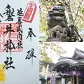 Photos: 磐井神社の御朱印(令和元年11月)