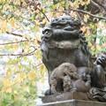 磐井神社(令和元年11月)