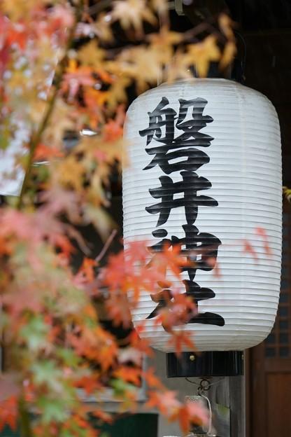 Photos: 磐井神社(令和元年11月)