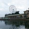 Photos: 浜名湖スナップ