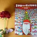Photos: 100にんのサンタクロース