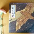Photos: よだかの星