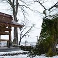 Photos: 普光寺・毘沙門堂