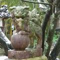 Photos: 藤基神社
