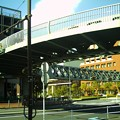 Photos: 丸い歩道橋