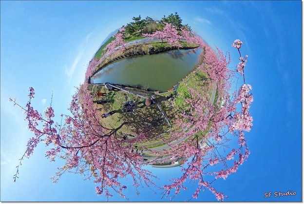 "Little Planet ""SAKURA"""