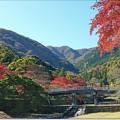 "Photos: 養老の滝 ""不動橋"""