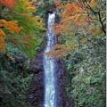 Photos: 養老の滝