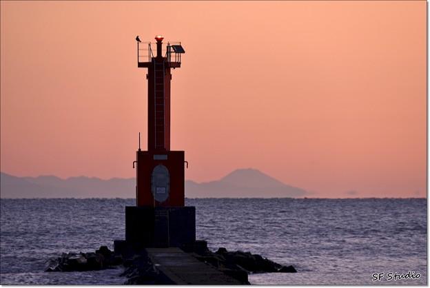 Photos: 令和元年 最後の富士山