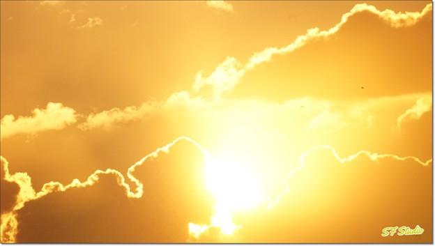 "Morning Rays ""伊勢の國"""