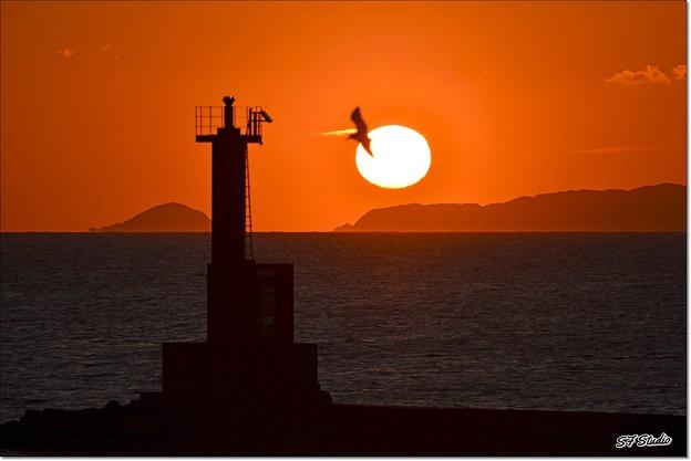 答志島の日の出