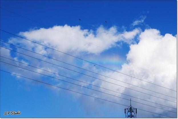 虹のメロディ♪