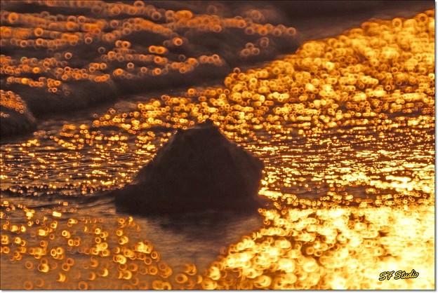 スパンコールの渚