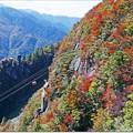 Photos: 御在所の秋