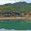 "Photos: 紀北町 ""片上池の秋"""