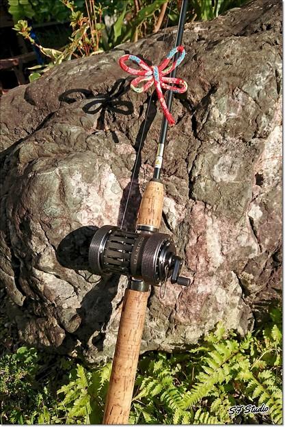 釣り糸に赤トンボ