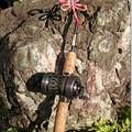 Photos: 釣り糸に赤トンボ