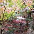 Photos: 散策「大石不動院の大師堂」