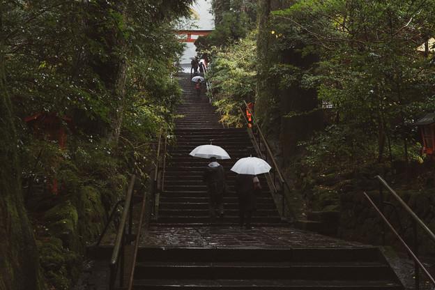 箱根神社階段