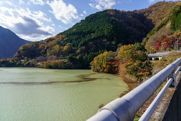 秋の丹沢湖
