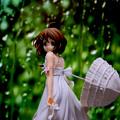 「雨の日」  テーブルフォトです