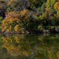 Photos: 紅葉と映り込み