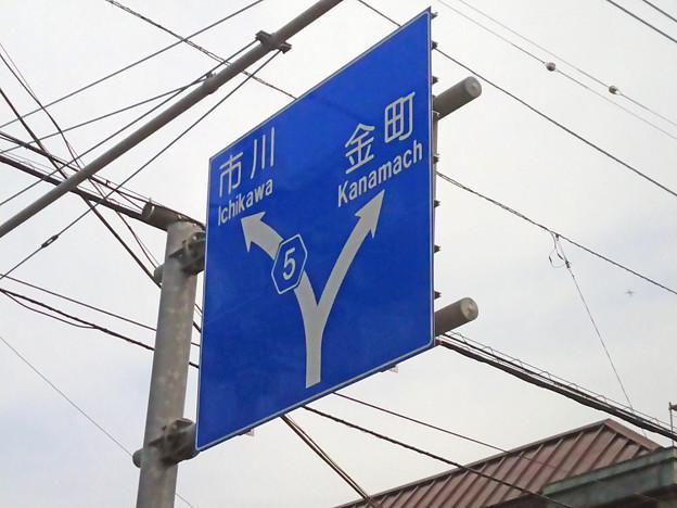 標識(青看) [千葉県道5号線]