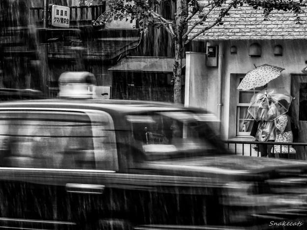 「雨宿り」 丸太町通 - 京都