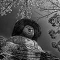 桜と五劫思惟阿弥陀仏