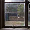 Photos: 「窓」 - 元・立誠小学校 京都 -