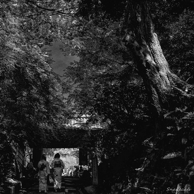 京都 高台寺 台所坂