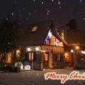 Photos: 素敵なクリスマスを~♪
