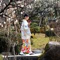 Photos: 庭園散歩