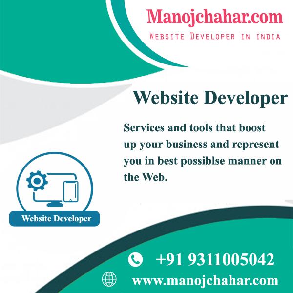 Professional Website Developer in Delhi